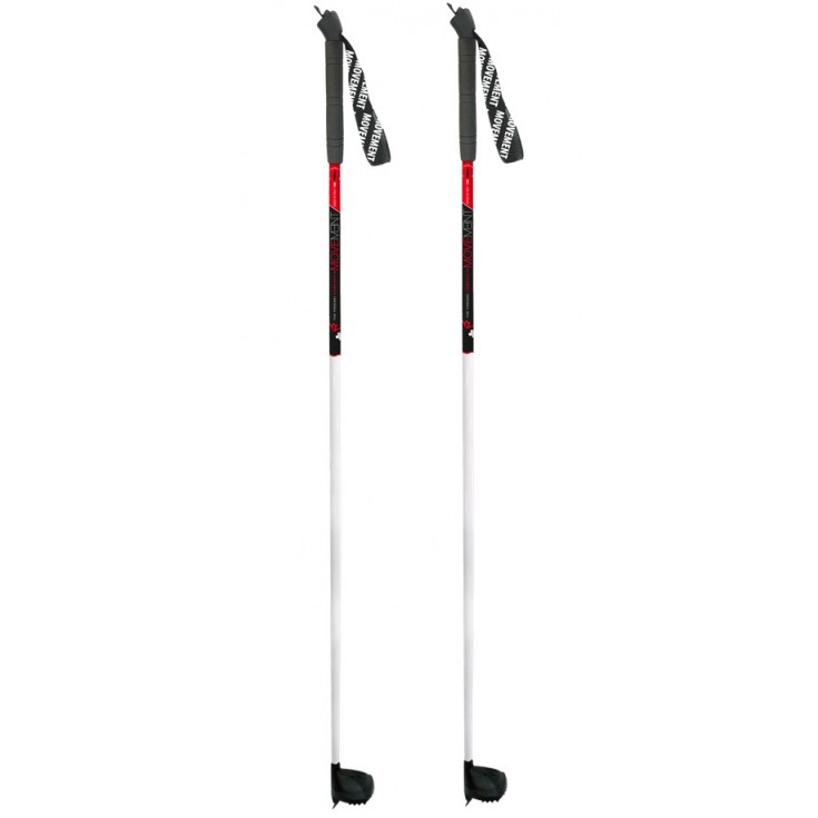 bâton de ski