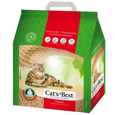 cats best