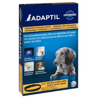 adaptil collier
