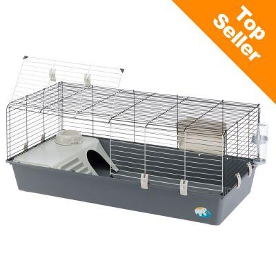 cage cochon d inde