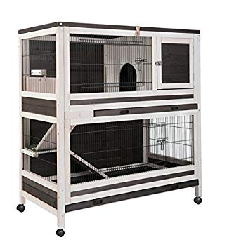 cage lapin interieur
