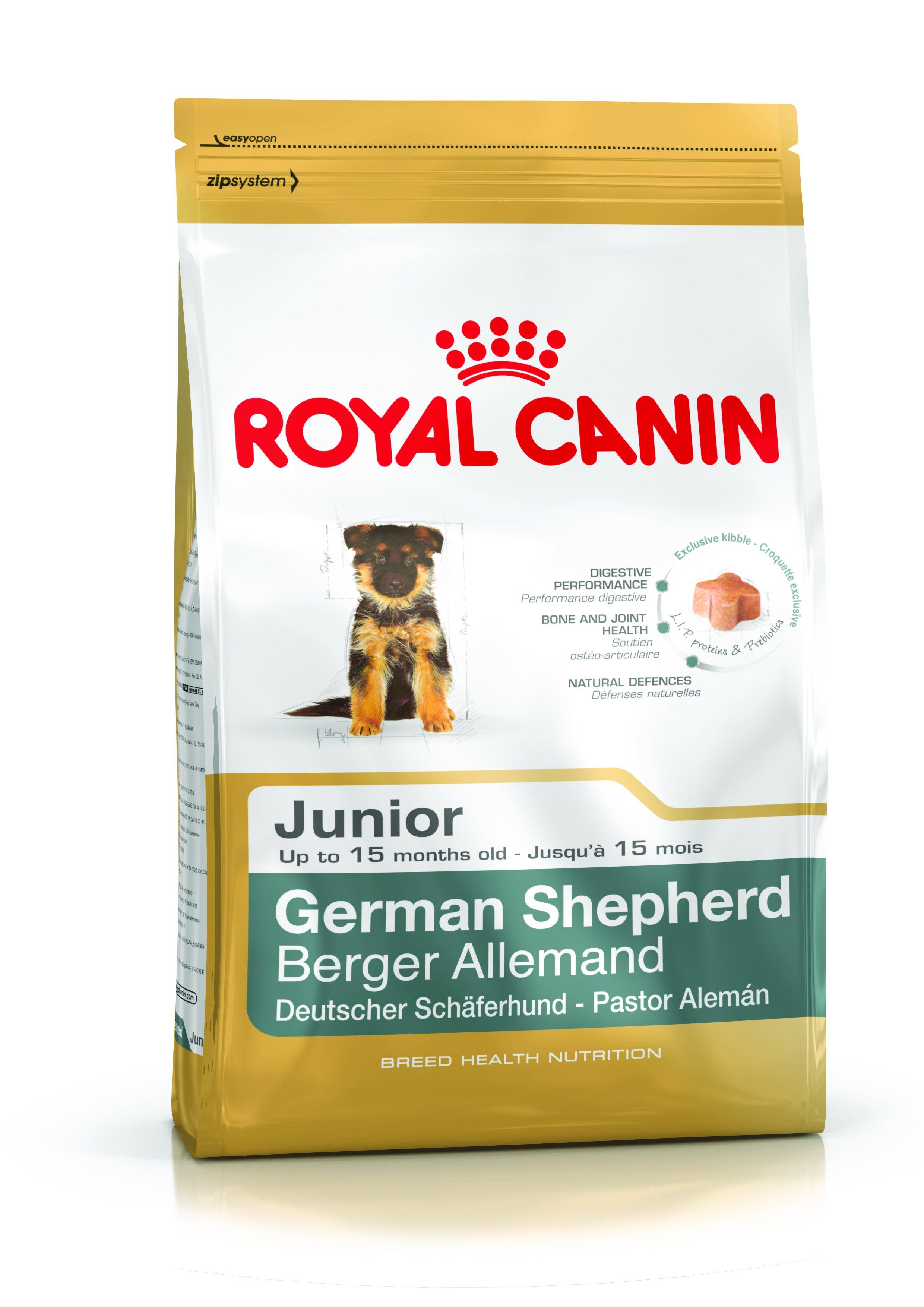croquette berger allemand