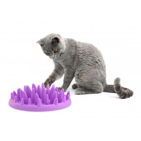 gamelle anti glouton pour chat