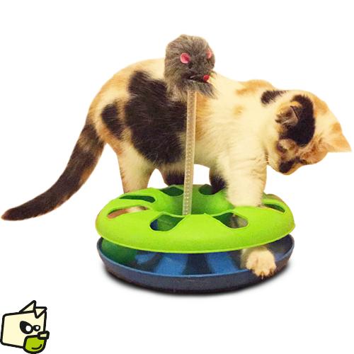 jeu du chat