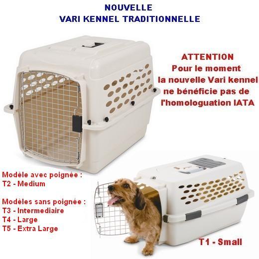 kennel chien