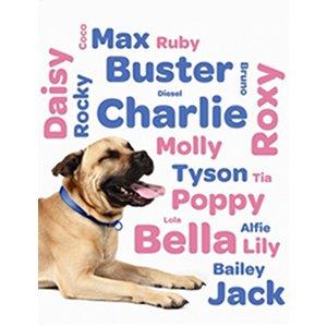prenom chien